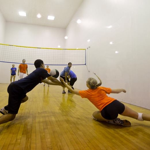 wallyball (2)